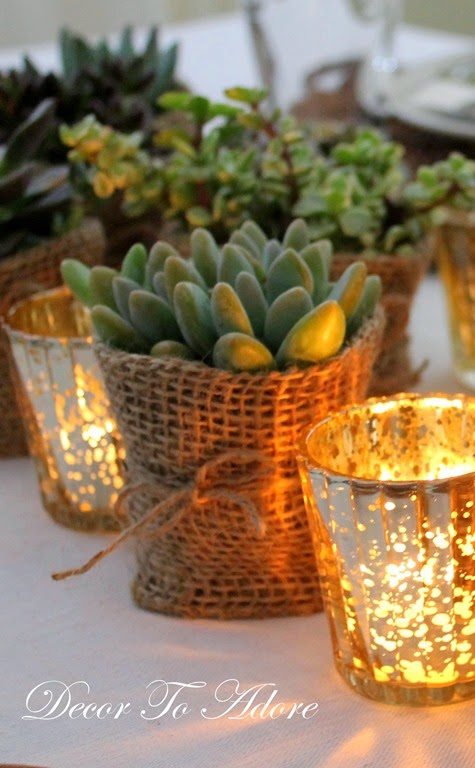 Succulent themed party