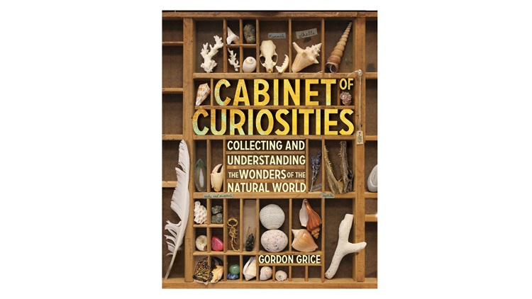 A Cabinet of Curiosities book