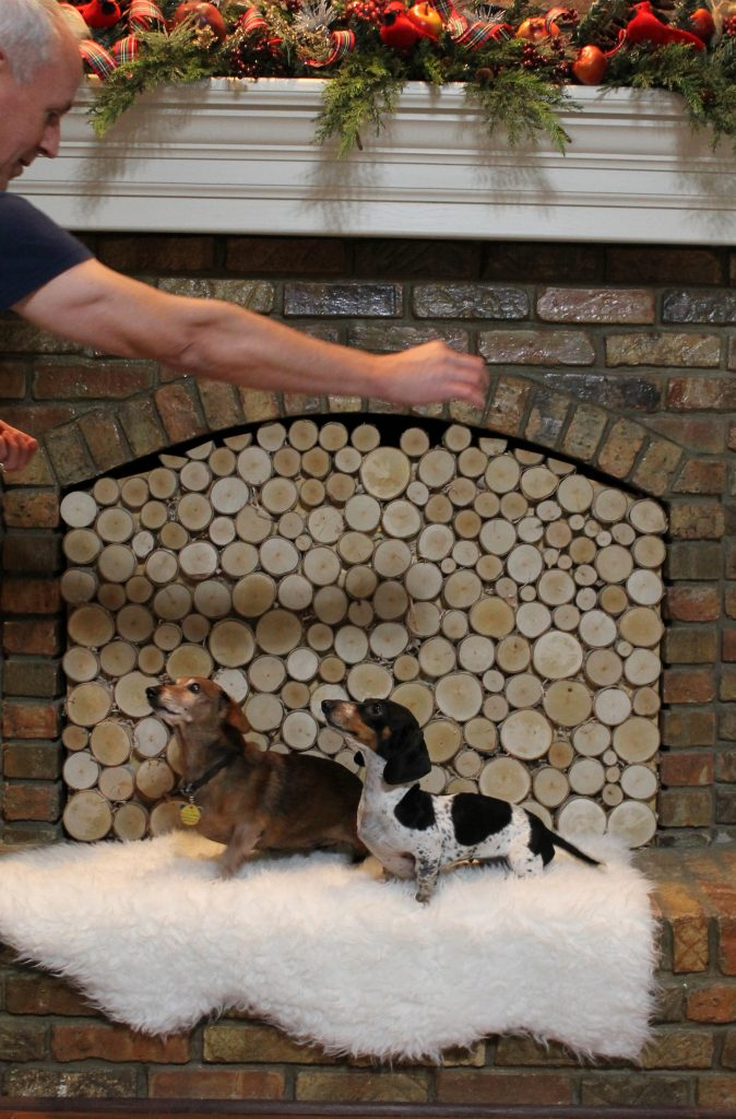 Stacked Birch Log Fireplace Insert blooper