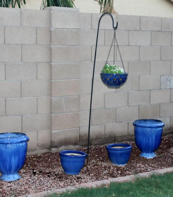 Creating A French Garden In the Southwest