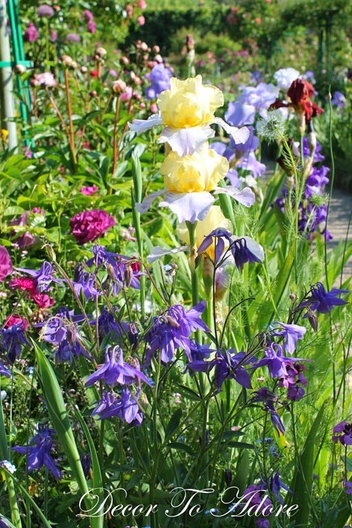 Monet's Jardin Clos Normand (Closed Garden Normandy)