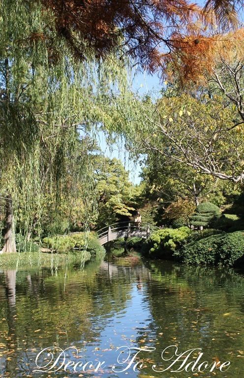 Autumnal Splendor at the Japanese Garden