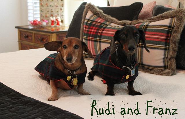 Cozy Christmas 2106 Rudi and Franz