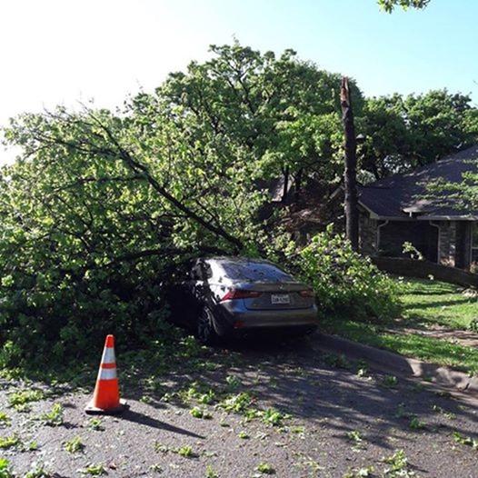Storybook Cottage Versus A Tornado