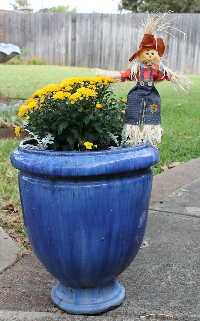 Decor To Adore Storybook Cottage Early Fall Garden blue pot