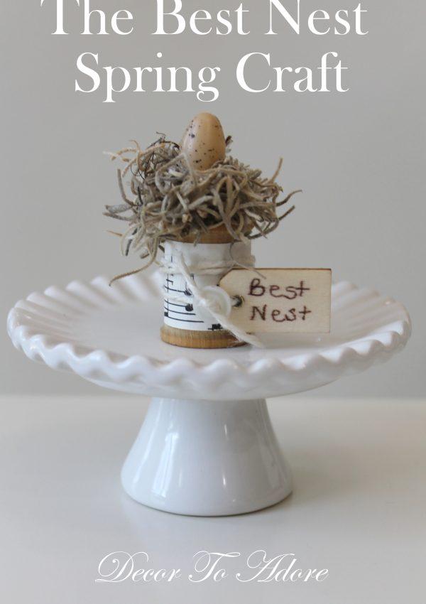 The Best Nest Spring Craft